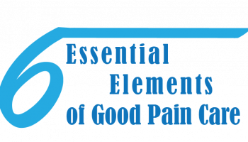 The Six Essential Elements of Good Pain Care